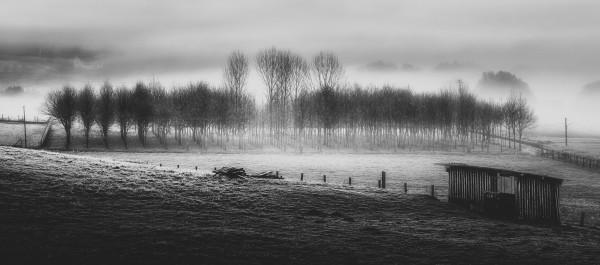 Fog photography image